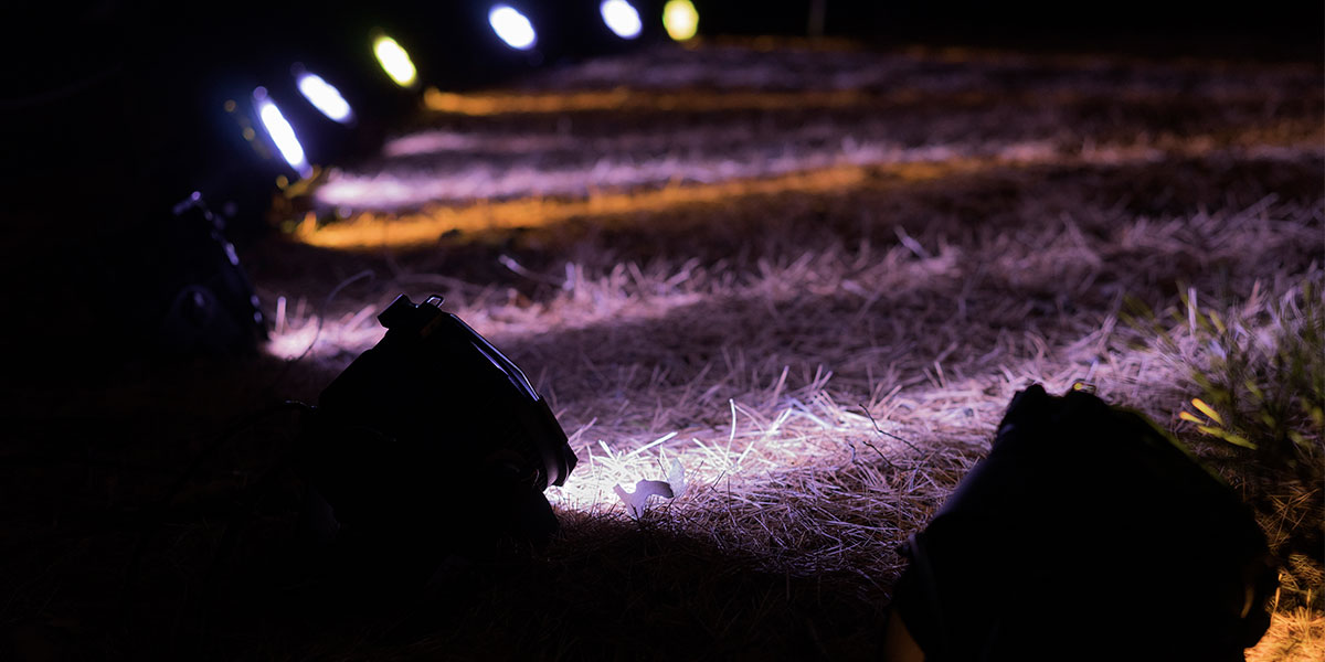 iluminación exterior sin cables para jardín led